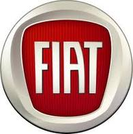 OEM 2014 Fiat 500 Decal (Part #82212783)